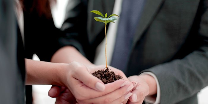 Webinar: Sembrando valor en las organizaciones