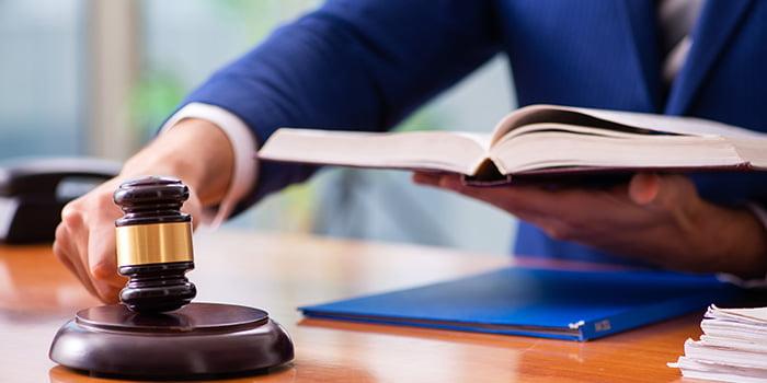 Webinar: Derecho penal constitucional
